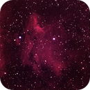 Pelican Nebula (IC 5070) on 35mm Film,                                AlenK