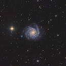 NGC1232,                                Richard Muhlack