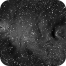 NGC2264,                                John Bozeman