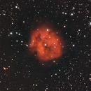 Cocoon Nebula IC5146,                                christianhanke