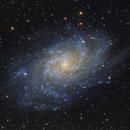 M33 - The Triangulum Galaxy,                                Callum Hayton