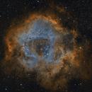Rosette Nebula-Caldwell 49,                                Jeff Kisslinger