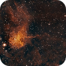 The Spider and the Fly - IC 417 and NGC 1931,                                Timothy Martin & Nic Patridge