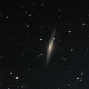 NGC 2683 UFO galaxy in Lynx,                                Patrick Duis