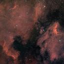 North-America-&-Pelican-Nebulae-[NGC-7000-&-IC-5070]-Mosaic,                                agostinognasso