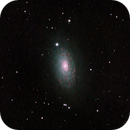 M63 (Sunflower Galaxy),                                Klaus Haevecker