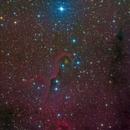 IC1396,                                Kang Yao