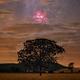 Carinae in perspective,                                Carlos 'Kiko' Fai...