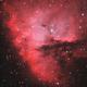 NGC 281,                                Carsten Dosche