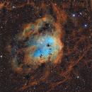 IC410 - SHO,                                Alexandre Itic