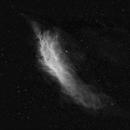 California Nebula in Ha,                                Steve Porter