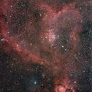 Heart Nebula NGC1805,                                Jocelyn Podmilsak
