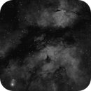 Sadr and Gamma Cygni Nebula,                                Dave Frost