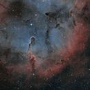 IC1396 - The Elephant trunk Nebula,                                T-virus