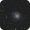 M101 with Samyang 135mm and ASI178MM,                                Ben