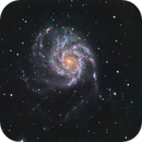M101 Lacerta 250 and ZWO183MC,                                Piet Vanneste