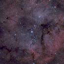 IC 1396 - The Elephant's Trunk Nebula,                                Florent Cazalaa