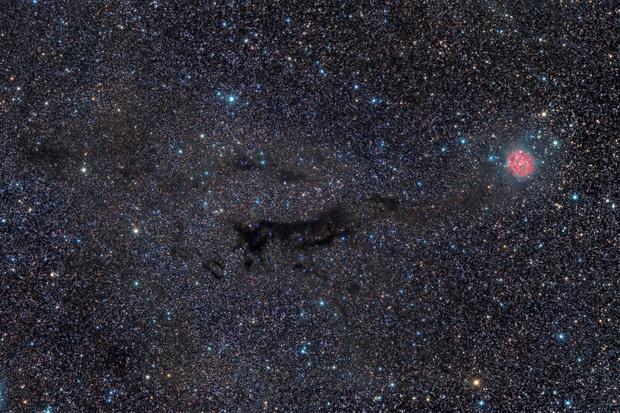 IC5146 Cocoon Nebula and B168 Dark Nebula,                                Andrea Pistocchini - pisto92