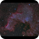 The Great Wall in NGC 7000,                                Göran Nilsson