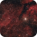 IC1318,                                Chief