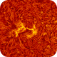 2018.06.17 Sun AR12713 H-Alpha animation,                                Vladimir