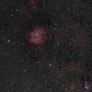 Rosette Nebula widefield,                                Eric Cauble