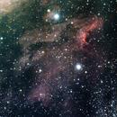 The Pelican Nebula,                                Jim Medley