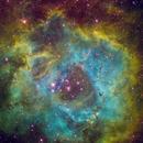 Rosette Nebula,                                Astro-Mike70