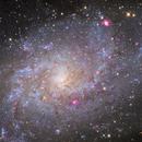 M33,                                Kaori Iwakata