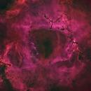 Rosette Nebula HGO Starless 4-Panel Mosaic,                                Mark Carter