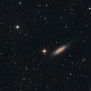 NGC 6503 - widefield,                                Gotthard Stuhm