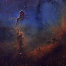 The Elephant's Trunk Nebula,                                Christer Strandh