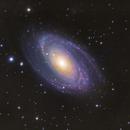 Bode's Galaxy,                                Daniel Hightower