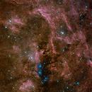 VDB_131. NGC 6914,                                litobrit