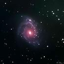 NGC 2997 in Antlia,                                Bruce Rohrlach