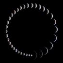 A perfect circle,                                Łukasz Sujka