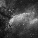 IC 4628 Prawn Nebula in Ha,                                Peter Rejto