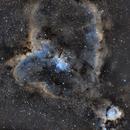 IC1805,                                Kenneth Hoynes