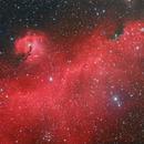 IC2177 Seagull Neb.,                                Juan José Picón