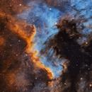 Cygnus Wall,                                Matt Proulx