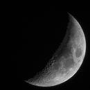 Moon!!,                                Palmito