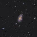 M109 - The vacuum cleaner galaxy,                                RononDex