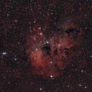 IC 410 Tadpole Nebula,                                Frank Iwaszkiewicz
