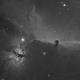 Horse head nebula in H-a,                                DmitryPodorozhko