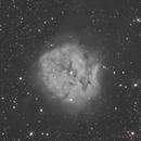 IC 5146 / Cocoon Nebula,                                Fabio Mirra