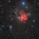 Northern Trifid - NGC 1579 in Perseus,                                Steve Milne