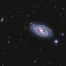 M109 Barred Spiral Galaxy,                                Debra Ceravolo