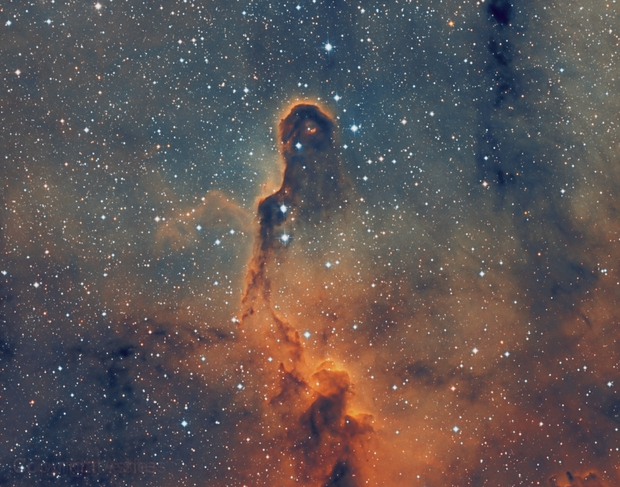 IC1396 - Elephant's Trunk in SHO,                                Zheng Fu