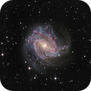 M83 - The Southern Pinwheel Galaxy,                                Hap Griffin