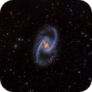 NGC 1365 - Deep Sky West Remote Observatory,                                Deep Sky West (Ll...